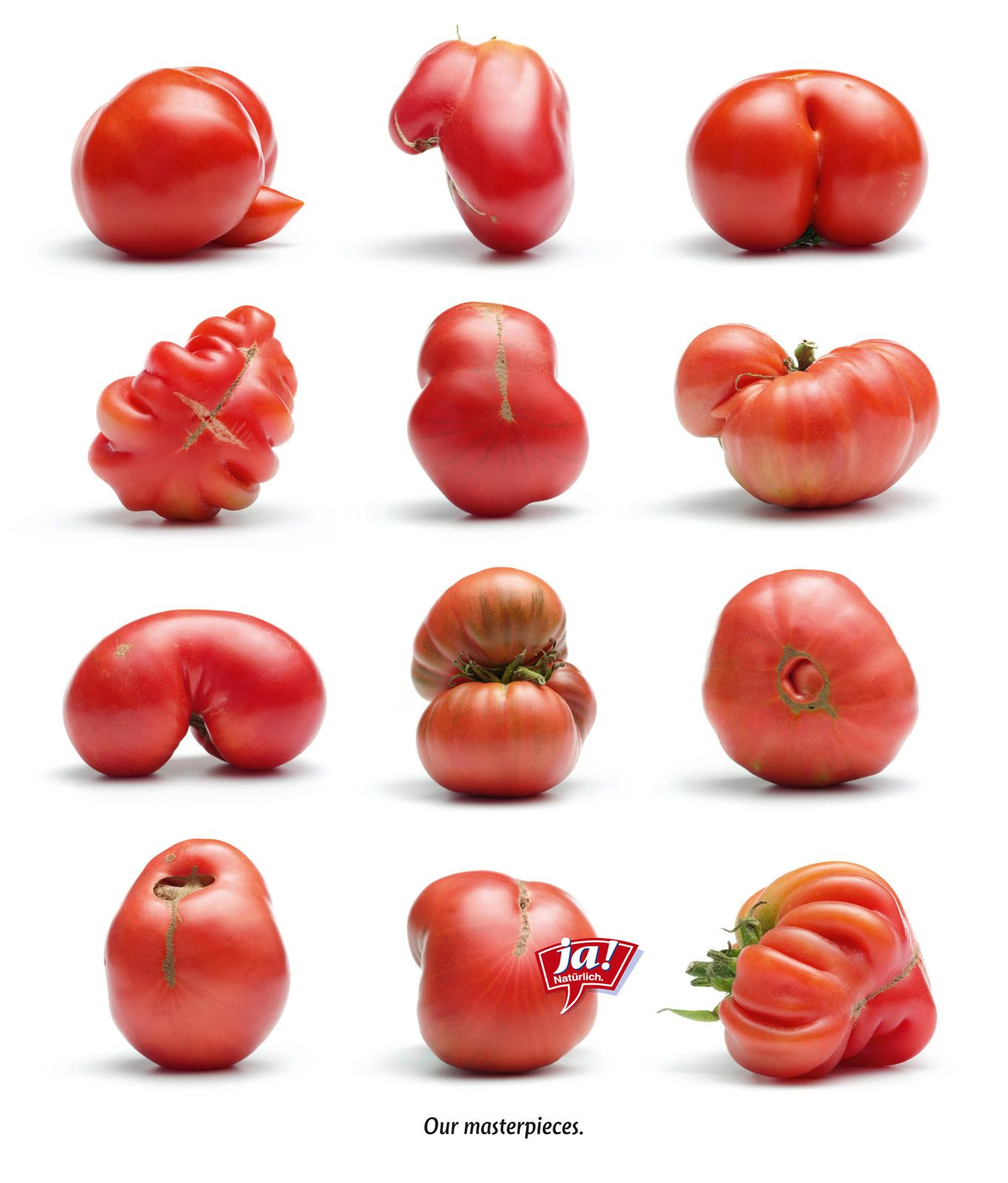 Ugly tomatoes make for a beautiful message semillas - Semillas de frutas y verduras ...
