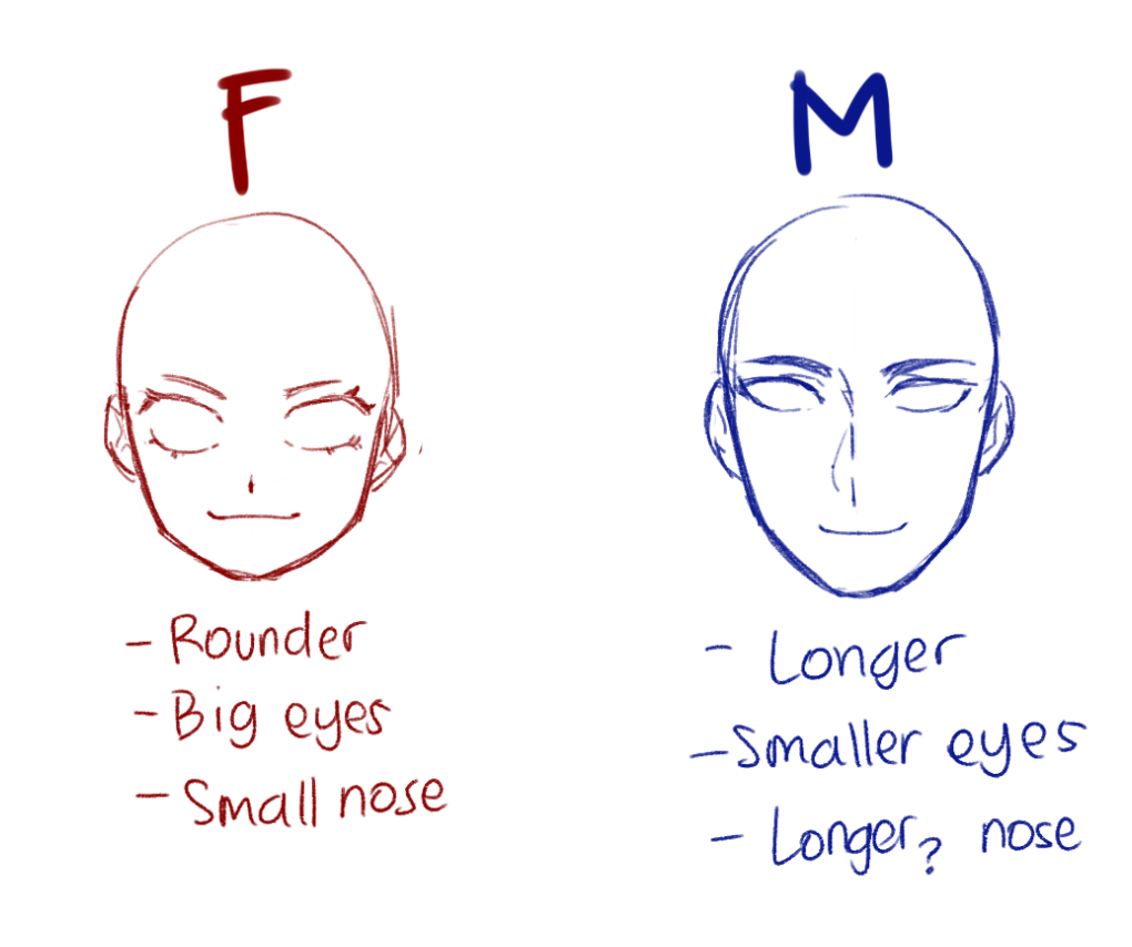 Simple Anime Anatomy For Female And Male Simple Anime Drawings Here I Ll Explain What In 2020 Anime Drawings Tutorials Anime Drawings Sketches Drawing Tutorial Face