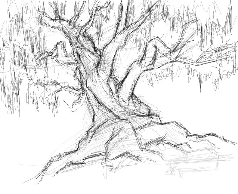 +real Sketched Drawings | Tree Sketch By Savari07 On DeviantART