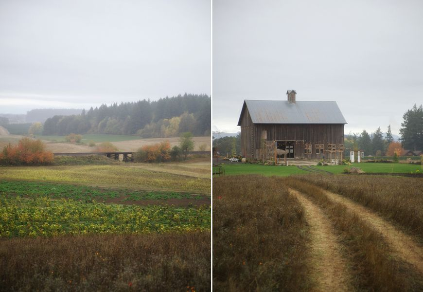 Barn Weddings in Oregon | Barn wedding, Portland weddings ...