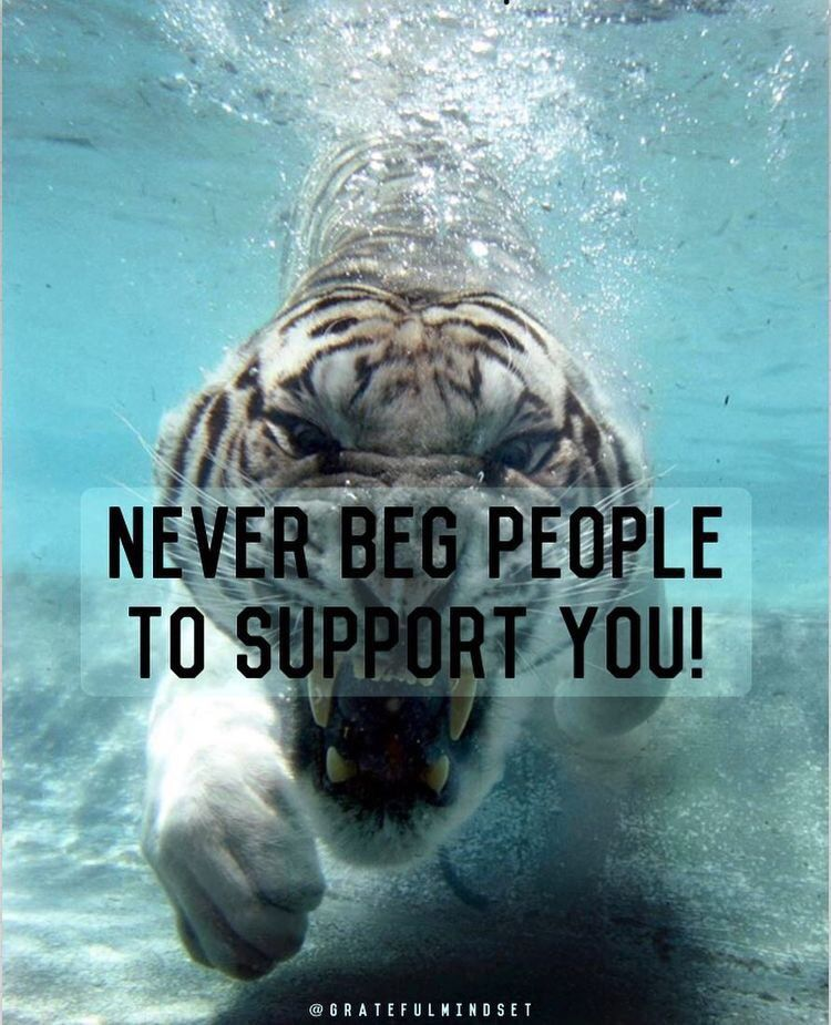 Never Beg People