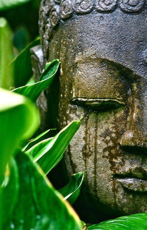 Pin By Belinda On Nature At Its Best Buddha Zen Buddha Art Buddha