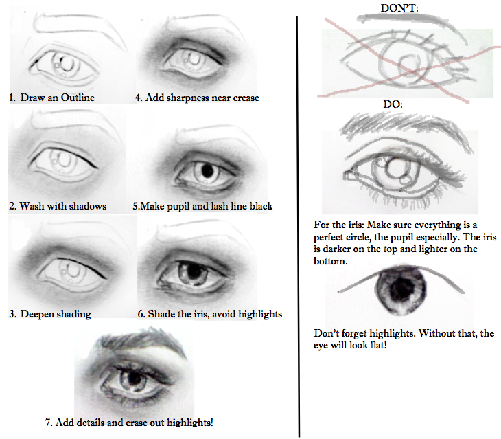 How To Draw A Realistic Female Eye 10 Steps Drawing Eyes Eye