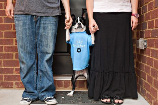 That's One Way to Announce a Pregnancy - Neatorama