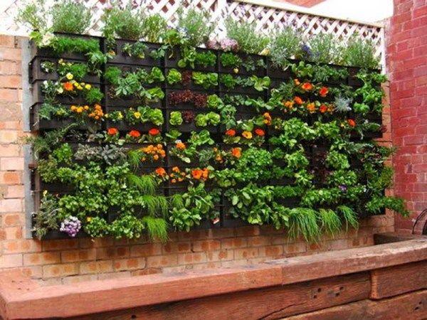 Huerta colgante para un espacio peque o patios terrazas for Jardines verticales en balcones