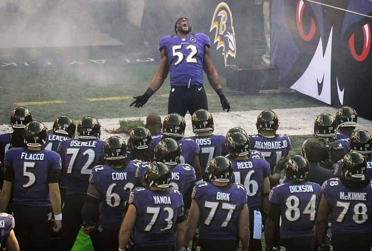 Ray Lewis Hd Wallpapers Backgrounds 1200 800 Ray Lewis Wallpapers 43 Wallpapers Adorable Wallpa Baltimore Ravens Football Baltimore Ravens Ravens Football