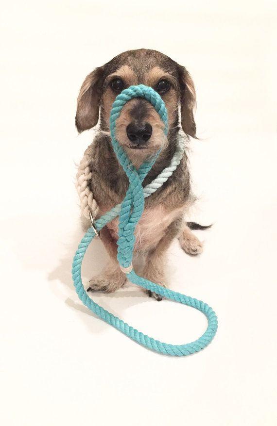 Two Tone Dog Leash Hand Dyed Dog Leash Gradient Dyed Dog Leash Rope Dog Leash Ombre Dog Leash Dog Leash Slip Lead