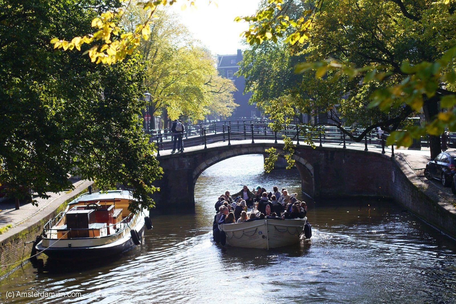 Yellow Autumn Sunday 10