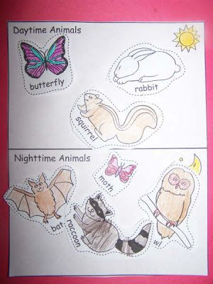 nocturnal animals worksheets shannon wrote about a daytime nighttime animal cut n paste. Black Bedroom Furniture Sets. Home Design Ideas
