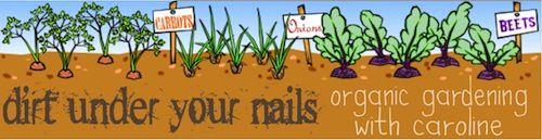 Organic gardening links