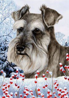 Schnauzer Uncropped by Tamara Burnett Winter Berries Garden Dog Breed Flag 12'' x 18 by Unknown. $15.99. Indoor/Outdoor flag is 12 x 18 inches and is made from 2 pieces of fabric sewn back to back to withstand even the most severe weather. This allows the text and image to be seen the same from both sides. Pole and bracket are not included. Great flag for the upcoming winter season. Made in USA