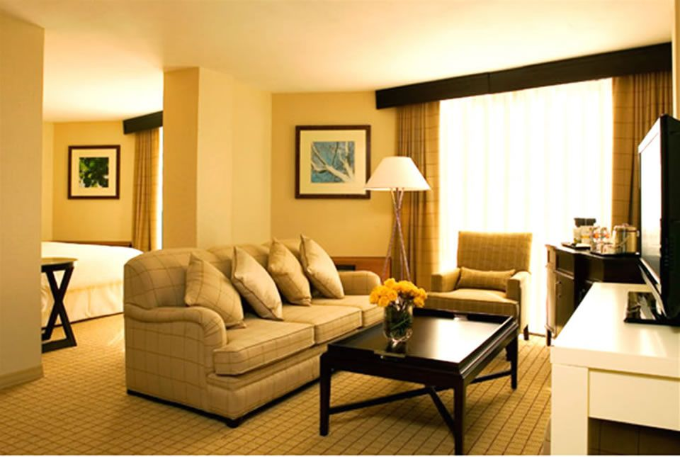 interior design the living room apartment then beautiful carpet and beautiful floor lamp also wooden