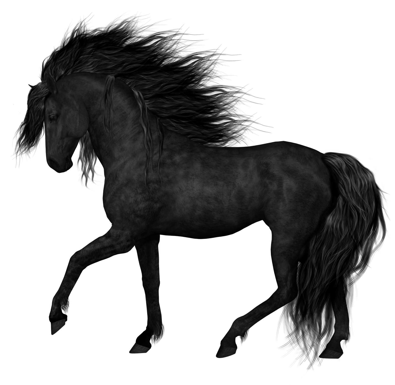 Black Horse Png Clipart Picture Horses Black Horse Horse Art