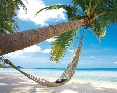 plages plage de r ves avec palmier et hamac reproductions acheter des posters sur le site. Black Bedroom Furniture Sets. Home Design Ideas