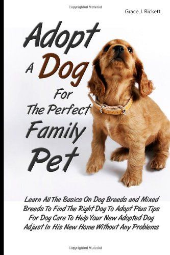 Doggie Street Festival Doggiestreet Profile Pinterest