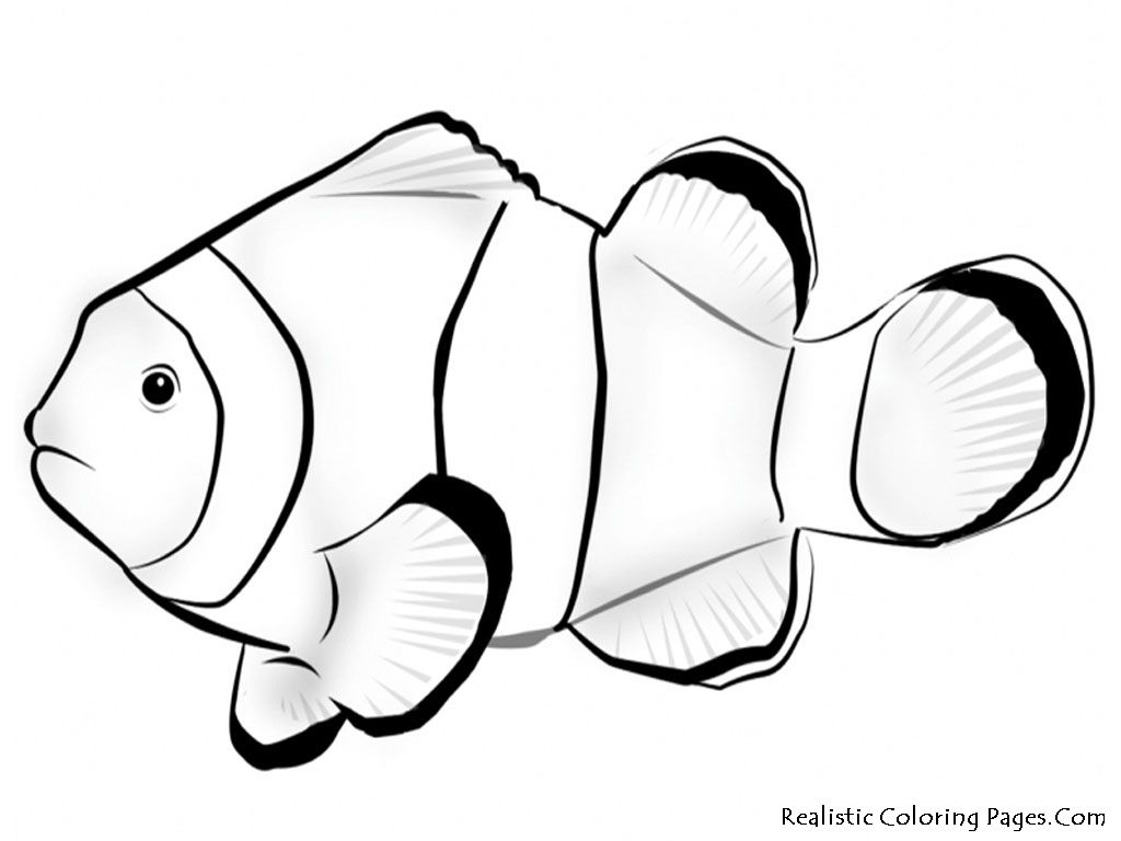 Fish coloring page