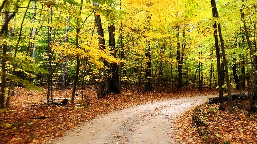 Six Best Roads To Experience Door County Fall Colors Door County Mom In 2020 Door County Wisconsin Fall Door County Door County Wisconsin