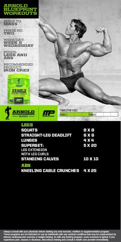 Arnold phase 2 Workouts Pinterest Workout, Body build and Gym - new arnold blueprint ebook