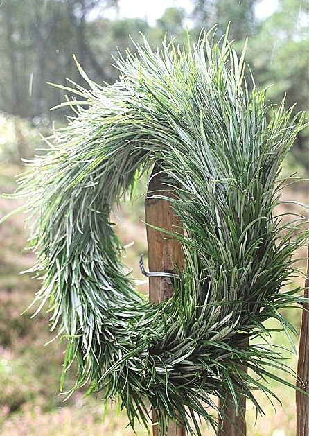 Photo of Wreath Ideas – Now THAT is a wreath!