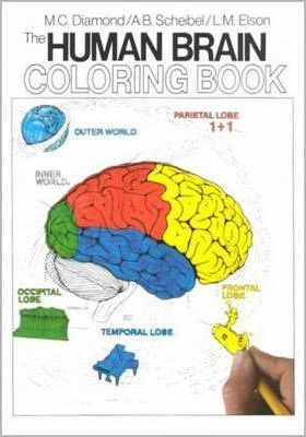 The Human Brain Coloring Book Download (Read online) pdf eBook for ...