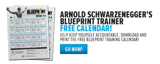 Arnold schwarzeneggers blueprint to mass training schedule bodybuilding arnold schwarzenegger blueprint trainer has videos and daily training schedule pdf printouts and an email sign up especially for malvernweather Image collections