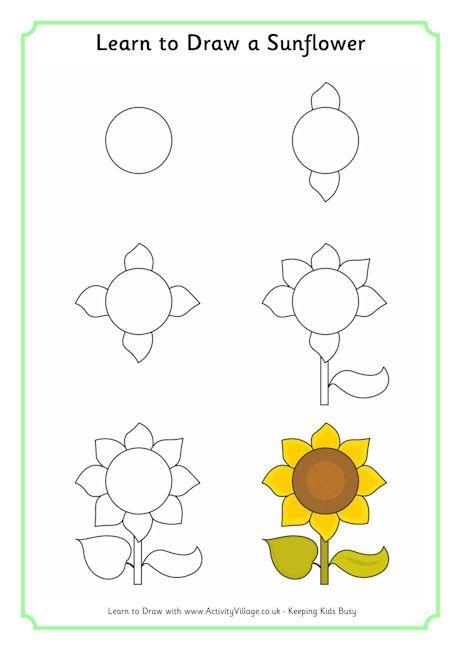 Learn to draw a sunflower science pinterest dessiner - Comment dessiner un tournesol ...