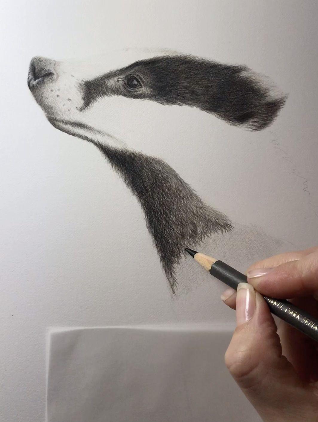 Badger Art