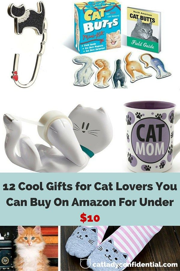 12 Cool Gifts for Cat Lovers You Can Buy On Amazon For Under $10 #giftsforcats