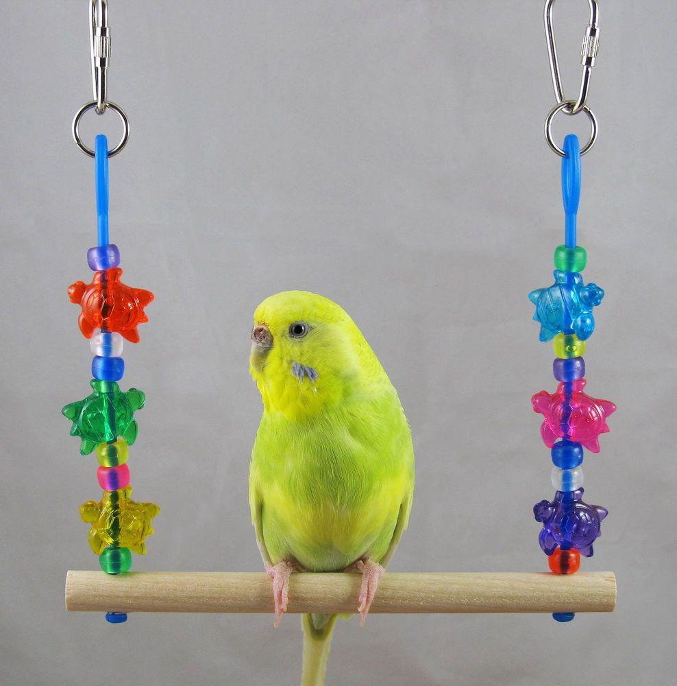 Finch Canary Parrotlet Size Sea Turtle Swing Small Bird Toy   eBay ...