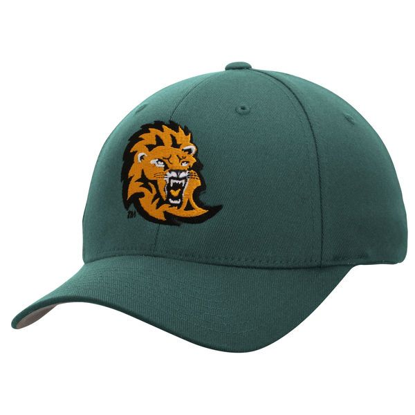 Southeastern Louisiana Lions Fundamental Flex Hat - Green - $16.99
