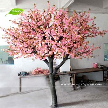 Cherry Blossom Tree Blossom Garden Garden Trees Small Trees For Garden
