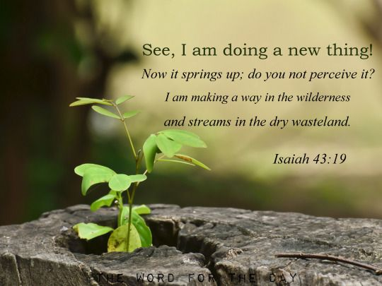 "The Word For The Day • ""See, I am doing a new thing!"" Isaiah 43:19 God... 