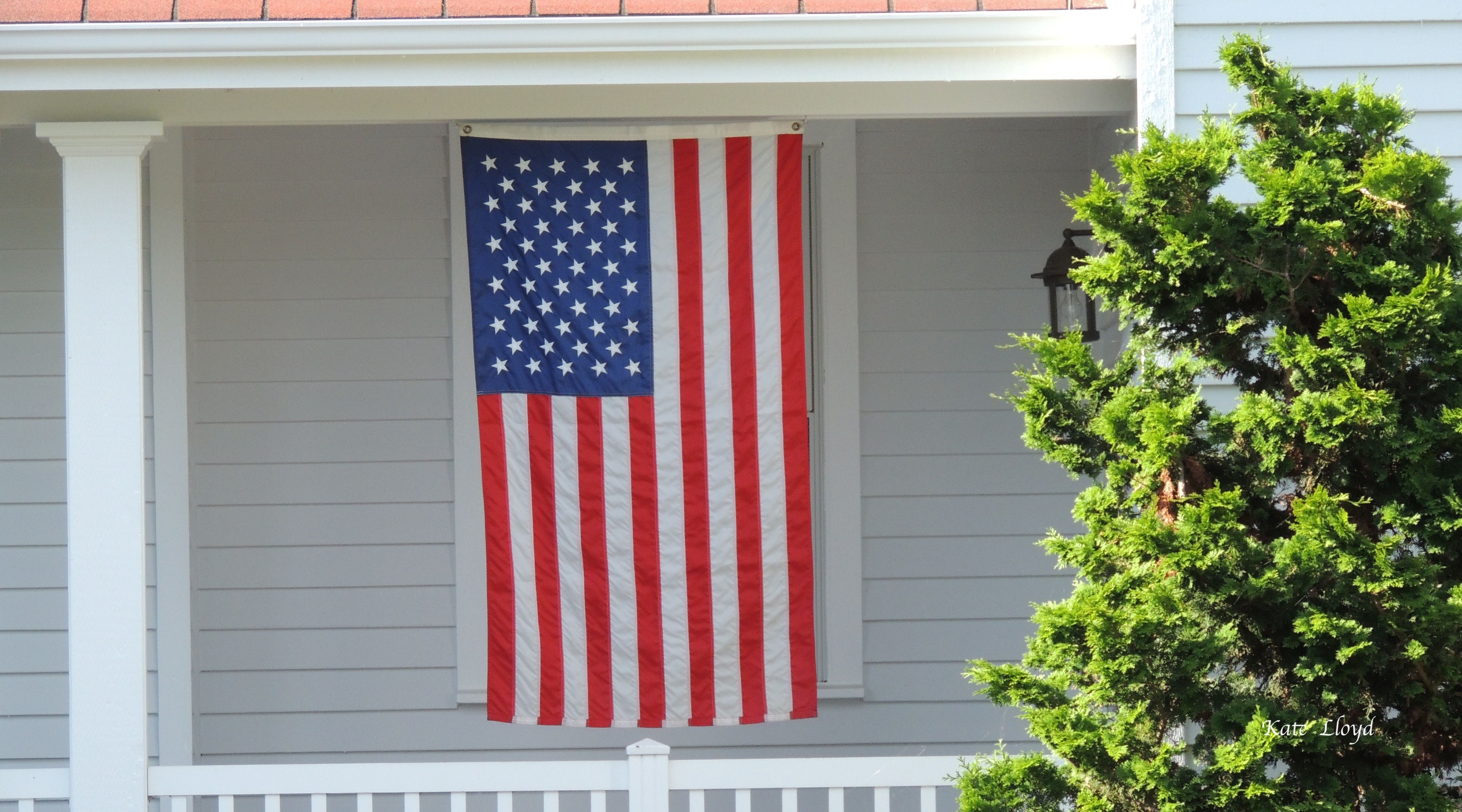 June 14th is Flag Day in the USA! https://www.facebook.com/katelloydbooks