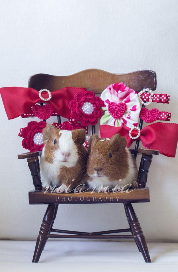 guinea pig hair ties Girls hair accessories Guinea pig hair bands