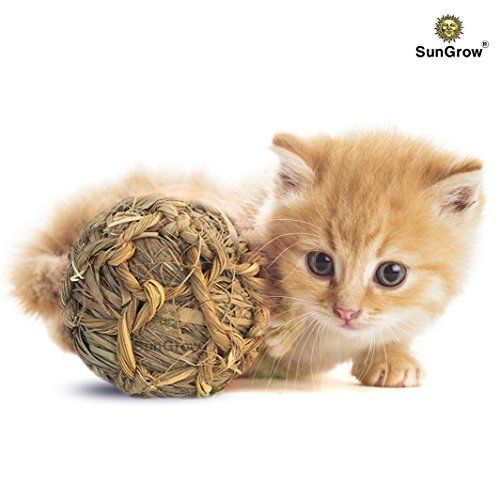 Sungrow Natural Seagrass Ball For Pets Dried Seagrass And Twine Toy For Dogs Cats Rabbits Hamsters Gerbils And Dog Toys Outdoor Cats Indoor Cat