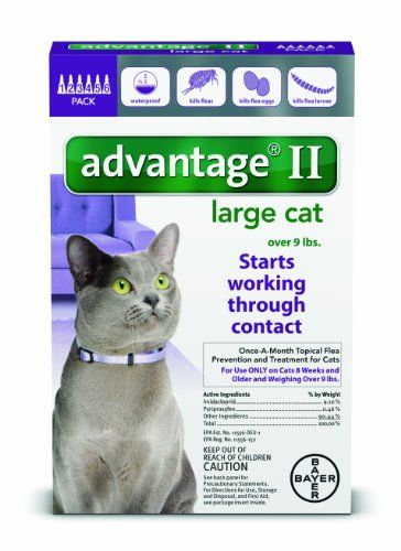Bayer Advantage Ii Flea Prevention For Large Cats Over 9 Lb 6 Doses Learn More By Visiting The Image Link This Is An Affiliate Cat Fleas Large Cats Fleas