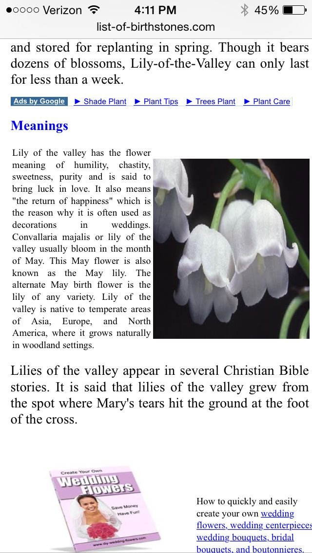 Lily of valley meaning Trees to plant, Lily of the