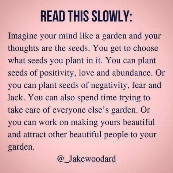 Hot me deep ik another level especially the last few sentences about focusing on your own garden is part of Inspirational quotes -