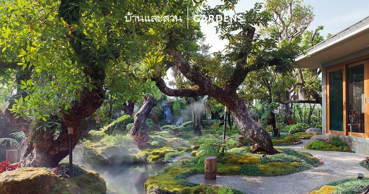 การ จ ดสวน มอสส น ได แรงบ นดาลใจจากป าด บเขาส ง Upper Montanerain Forest ซ งเป นล กษณะหน งของป าในเขตร อนช นบร เวณระด บส นเขาท ส ง สวนป า แบบสวน จ ดสวน