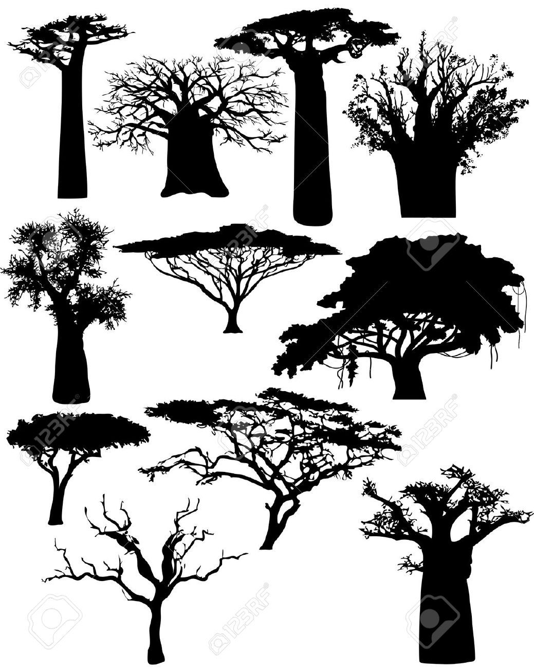 Songbird tattoo created at www mrsite com - Various African Trees And Bushes Vector Stock Vector