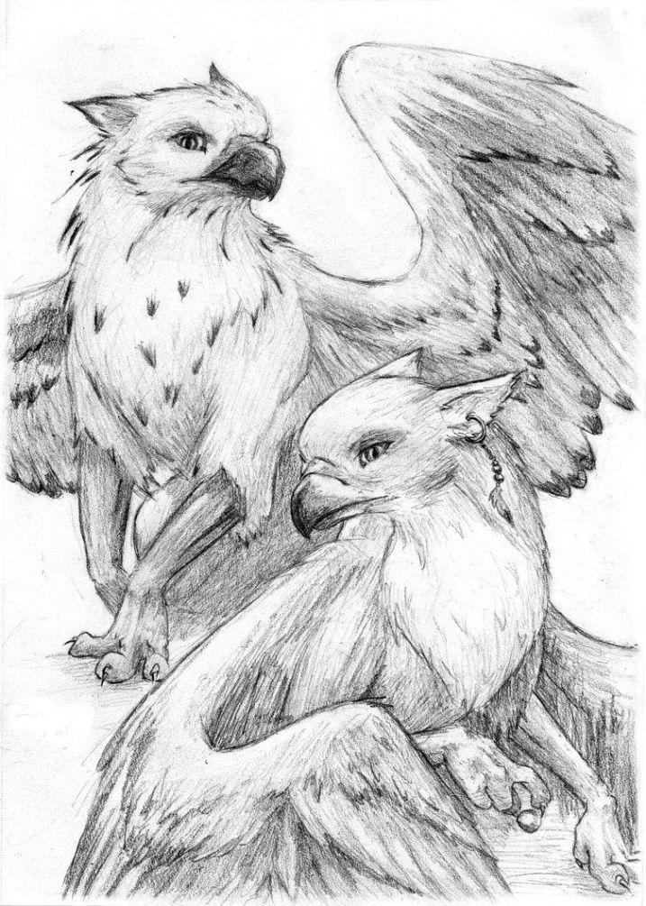 Мифические животные карандашом картинки