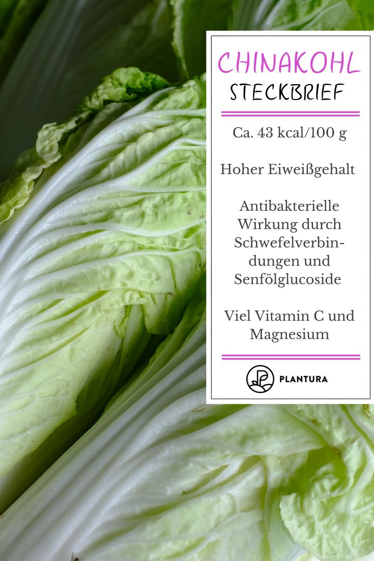 Chinakohl Leckeres Wok Gemuse Aus Dem Eigenen Garten Plantura Chinakohl Wok Gemuse Zucchini Anbau