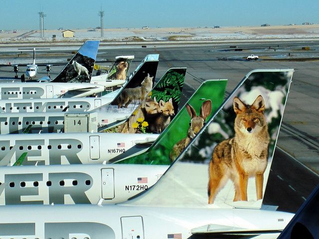 Frontier Airlines Plane Tails