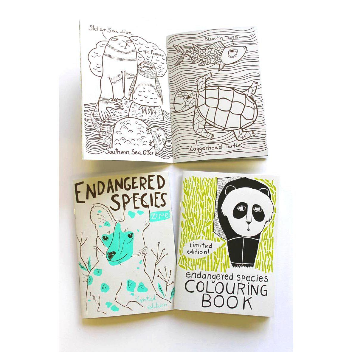 Endangered Species Colouring In Book Zine The Red Door Gallery