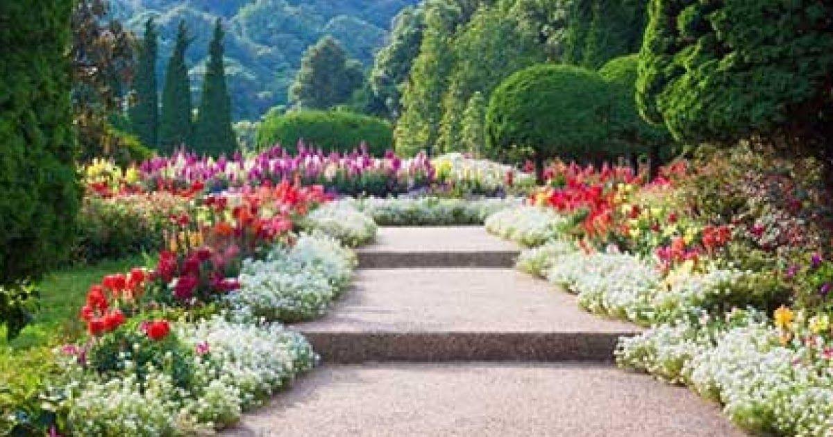 14 Pemandangan Terindah Di Dunia Dan Manjakan Mata Dengan 7 Pemandangan Taman Bunga Terindah Di Download 25 Air Terjun Kebun Bunga Taman Indah Pemandangan