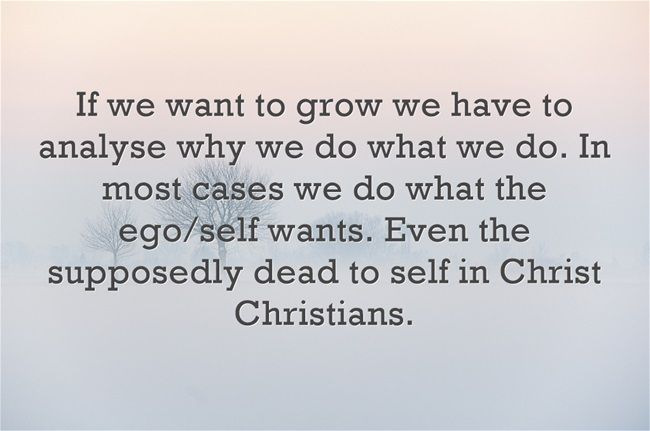 If we want to grow we have to analyse why we do what we do. In most cases we do what the ego/self wants. Even the supposedly dead to self in Christ Christians.