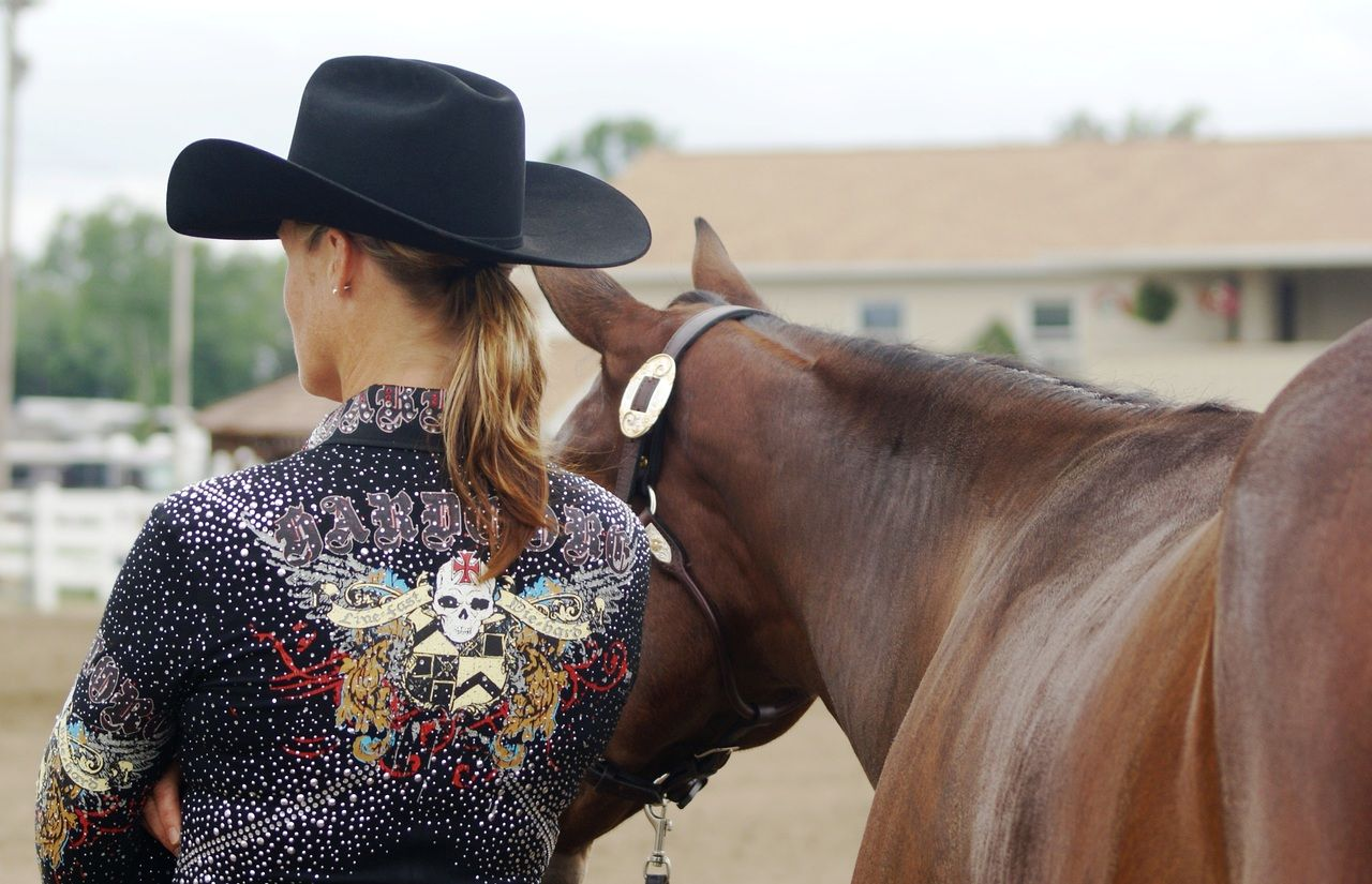 Different Horse Show Style