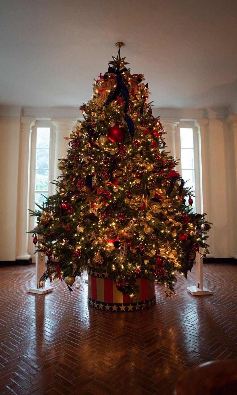 What I Saw During A First Look At The White House Christmas Decorations White House Christmas Decorations White House Christmas Tree White House Christmas