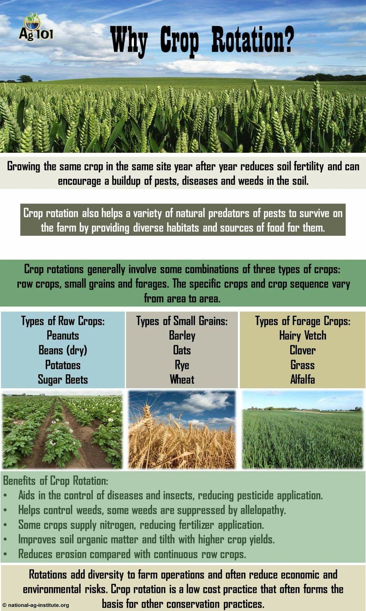Crop Rotation, Soil Health