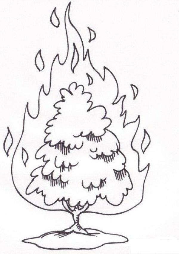 moses burning bush - Google Search | Church Ideas | Pinterest ...